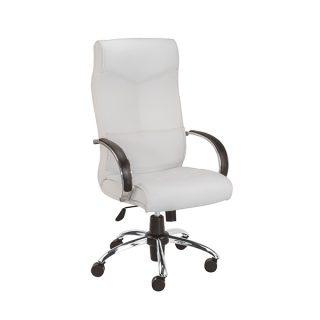 صندلی اداره و صندلی مدیریت پویا مدل M701